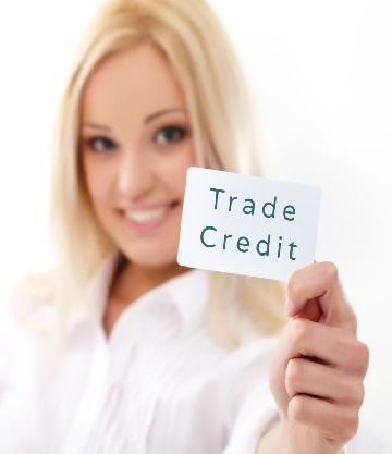 British insurers negotiating government trade credit backstop